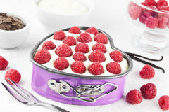 Free Small Raspberry Tart Stock Photography - 29490262