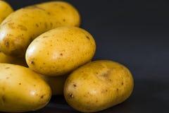 Small raw gourmet potatoeson black background. Small raw gourmet potatoes Royalty Free Stock Photos