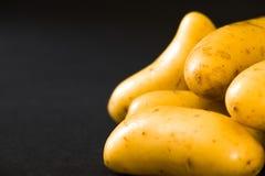 Small raw gourmet potatoeson black background. Small raw gourmet potatoes Royalty Free Stock Image