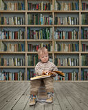 Small reader Royalty Free Stock Photo