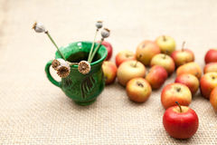 Small, red apples Stock Images