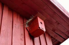 Small red bird house with nest on top. Small red bird house with nest on roof top Royalty Free Stock Photo