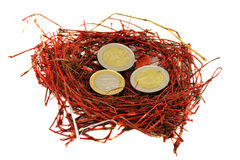 Red bird nest euro coins money concept white Royalty Free Stock Photography