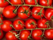 Small red cherry tomatoes on a box Royalty Free Stock Images