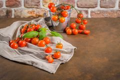 Small red cherry tomatoes Stock Images