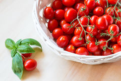Small red cherry tomatoes in a wicker basket on an old wooden table. A view of small red cherry tomatoes in a wicker basket on an old wooden table Stock Images