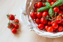 Small red cherry tomatoes in a wicker basket on an old wooden table. A view of small red cherry tomatoes in a wicker basket on an old wooden table Royalty Free Stock Photo