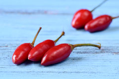 Small red chili peppers Stock Photos