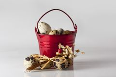 Small red decorative pail with eggs on the white background. Small red pail with partridge eggs on the white background Stock Images