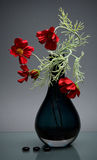 Small red flowers in dark glass vase on gray Royalty Free Stock Images