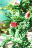 Small  red gift box Royalty Free Stock Photo