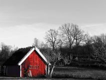 Small Red House. A small red house with straw roofing in southern part of Sweden Stock Photography