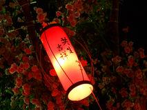 Small Red Lantern Royalty Free Stock Photo