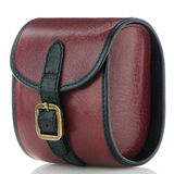 Small red leather bag Royalty Free Stock Photos