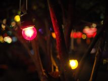 Small red yellow light bulb under tree branch in night market festival. Small red lighting bulb hanging, with blurred dark reflecting brown tree branch bush and Royalty Free Stock Photography