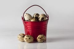 Small red decorative pail with eggs on the white background. Small red pail with partridge eggs on the white background Stock Image