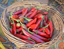 Small red peppers in a wood backet Royalty Free Stock Image
