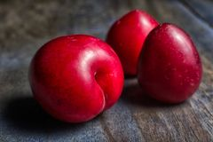 Red plums in Ecuador. Small red plums called Claudia in Ecuador Royalty Free Stock Image
