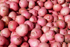 Small Red Potatoes Royalty Free Stock Photo