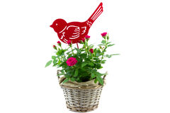 Small red roses and decorative metal bird Royalty Free Stock Images