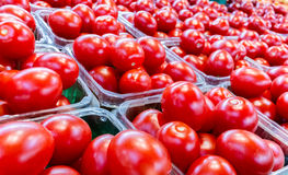 Small red tomatoes in plastic boxes. At the market closeup royalty free stock photography
