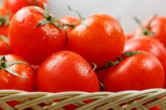 Small red tomatoes in a wicker basket on an old wooden table. Ripe and juicy cherry. And burlap cloth, Terevan style country style. selective focus royalty free stock photography