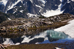 Small Reflection Pool Mount Shuksan Washington Stock Images