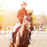 Small rider girl on show jumping competition. Small rider girl on horseback on show jumping competition Royalty Free Stock Photography