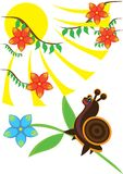 Small ridiculous snail Royalty Free Stock Images