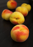 Small ripe apricots Royalty Free Stock Image