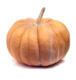 Small ripe pumpkin Stock Photos