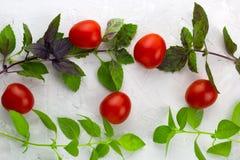 Small ripe tomatoes, fresh basil top view. Flat lay white concrete background stock photos