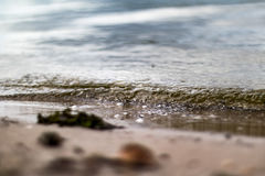 Small Ripple Wave Royalty Free Stock Image