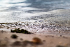 Small Ripple Wave Royalty Free Stock Photography