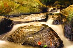 Small river Stock Image