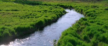 Small river. With fast stream among green meadows Royalty Free Stock Image