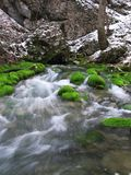 Small river. In Crimea mountains Royalty Free Stock Photo