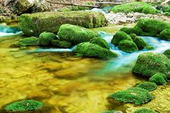 Small river Royalty Free Stock Photography