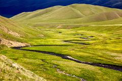 Small river in alpine meadows Royalty Free Stock Photography