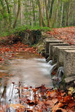 Small river between an autumnal forest Royalty Free Stock Photography