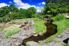 Small river at botanical garden Stock Photography