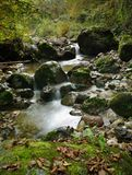 Small river cascade. View on the small river between stones in forest Royalty Free Stock Photography