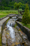Small river in the channel surrounding by trees, Moraca monastery, Montenegro Stock Photography