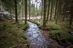 Small river in a cold winter forest Stock Photos