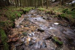 Small river in a cold winter forest Royalty Free Stock Image