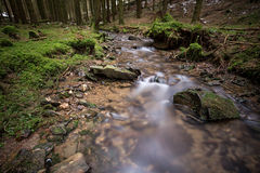 Small river in a cold winter forest Royalty Free Stock Photo