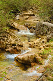 Small river in Crimea, Grand Canyon, spring Royalty Free Stock Photo