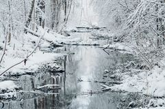 Small river in dreamlike snowy forest Royalty Free Stock Photos