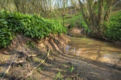 Small river, England Stock Photos