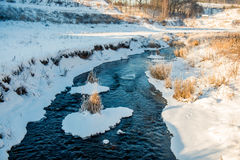 Small river in field Stock Photography